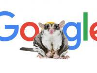 Google Possum, ou la mystérieuse mise à jour de Google sur le SEO local.